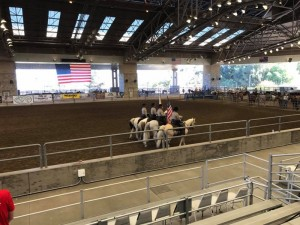 Roping Event 12